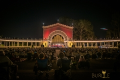 Balboa Park Organ at night