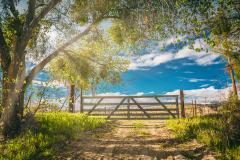 emerald-creek-gate